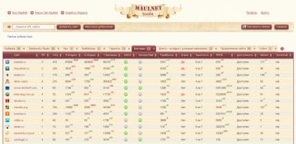 Панель управления MaulNet Tools